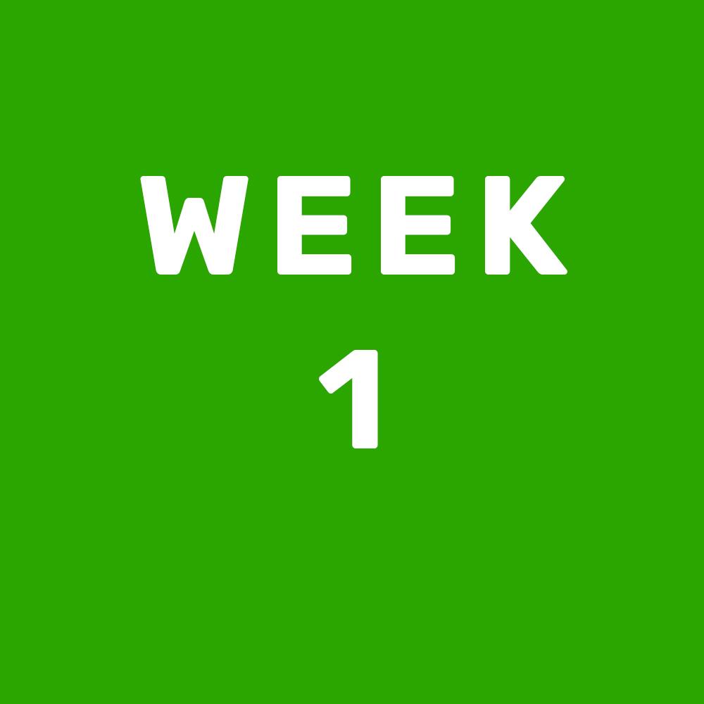 Text reading week 1